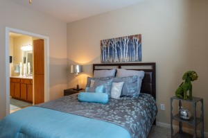 Two Bedroom Apartments for Rent in Katy, TX - Bedroom with view of Bathroom